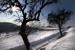 Eine herrliche Landschaft zu jeder Jahreszeit